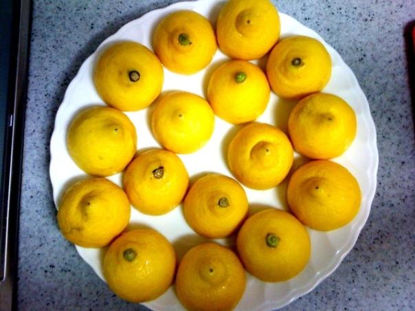 20110810-203148.jpg